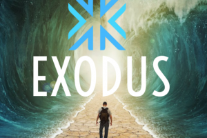 Exodus Wallet: il tuo software wallet per le criptovalute