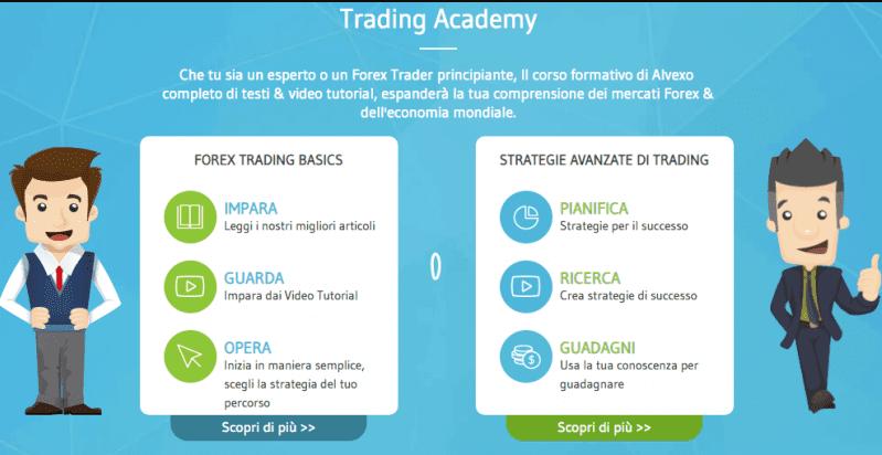 alvexo trading academy